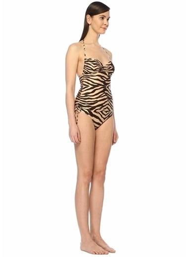 Zimmermann Mayo Zebra